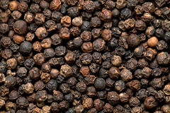 Black Peppercorn Stock Photography
