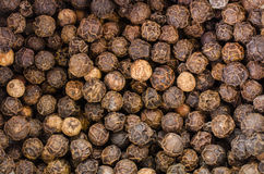 Black Peppercorn Close-Up Royalty Free Stock Images