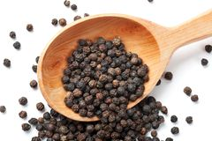 Black Peppercorn. Is strewed from a wooden spoon Stock Image