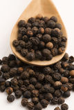 Black peppercorn Royalty Free Stock Photo