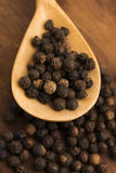 Black peppercorn Stock Images