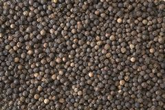 Black peppercorns. Close-up background of black peppercorns stock image
