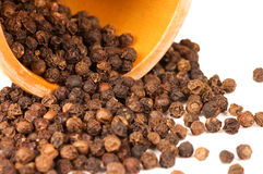Black Peppercorns isolated Royalty Free Stock Photos