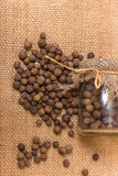 Black peppercorns in a jar Royalty Free Stock Images