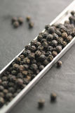 Black peppercorns from Kampot Stock Photography
