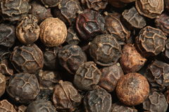 Black Peppercorns (Piper Nigrum) Stock Photos