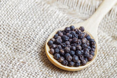 Black peppercorns in wooden spoon on burlap background Stock Photography
