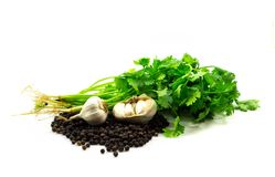 Black peppers,garlic, coriander solated on whtie background stock photo