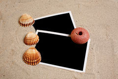 Black photo in beach sand with seashells royalty free stock photo
