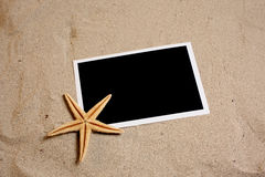 Black photo in beach sand with starfish royalty free stock images
