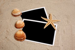 Black photo in beach sand with starfish and seashe Royalty Free Stock Images