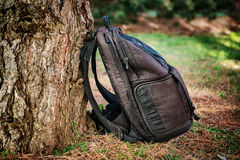 Black photography bag in the forest Royalty Free Stock Photo