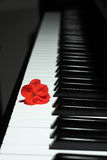 Black piano. Harmonious detail of a black piano and a red flor royalty free stock photos