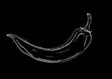 Black picture of chilli pepper Stock Images