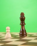 Black piece on board isolated on green Royalty Free Stock Image