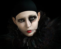 Black Pierrot, 3d CG. 3D computer graphics of a Pierrot with black feather collar vector illustration