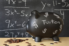 Black Piggy Bank Stock Photo