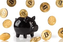 Black piggy bank with lots of bitcoins Stock Images