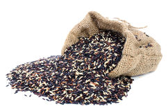 Black pile Rice in Gunny bag with white isolate background royalty free stock photo