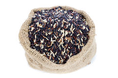 Black pile Rice in Gunny bag with white isolate background Royalty Free Stock Photography