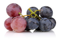 Black and pink grapes  Royalty Free Stock Photos