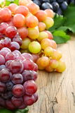 Black and pink grapes closeup. Royalty Free Stock Photography