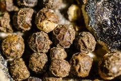 Black piper. Beads Royalty Free Stock Photos