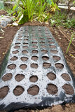 Black plastic agricultural mulch sheet Royalty Free Stock Images