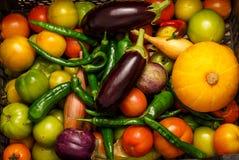 Black plastic box with fresh vegetables Stock Photos