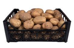 The black plastic box potatoes Stock Image