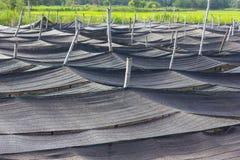 Black plastic mesh shade. Stock Images