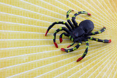 Black plastic spider on yellow Royalty Free Stock Photos