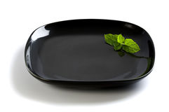 Black plate with peppermint garnish Stock Image