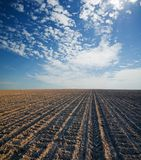 Black ploughed field Stock Images