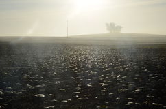 Black, plowed soil in the morning sun. Stock Photos