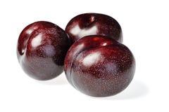 Black plum fruit. On white Stock Image