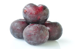 Black plums Stock Photography
