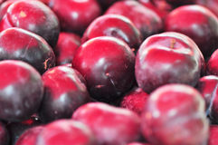 Black plums Stock Photos