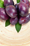 Black plums Royalty Free Stock Photography
