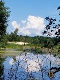 Black pond. Beack summer day royalty free stock photos
