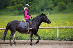 Black pony and girl Royalty Free Stock Images