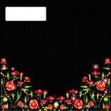 Black poppy background glossy banner Royalty Free Stock Photos