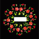 Black poppy color background banner Royalty Free Stock Photo
