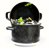 Black pot of freshly cooked mussels at the Flemish. Isolated on white background Stock Images