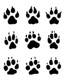 Print of dogs paws. Black print of dogs paws on white background Stock Photos