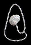black pryder med pärlor sammetwhite Arkivfoto