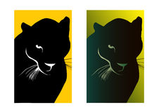 Black puma Royalty Free Stock Photos