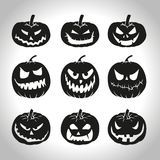 Black pumpkins. Set of Halloween pumpkins  on white Royalty Free Stock Photo