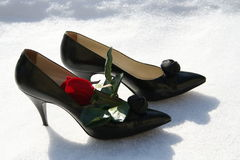 Black pumps. Black lady shoes with decoration of Rose are standing outdoors on snow Stock Photography