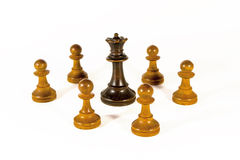 A Black Queen and White Pawns Stock Photos
